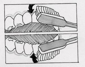 spazzolata della faccia frontale dei denti